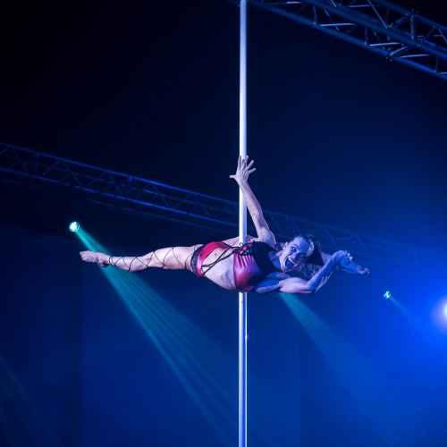pole art italy 2016 women elite 77